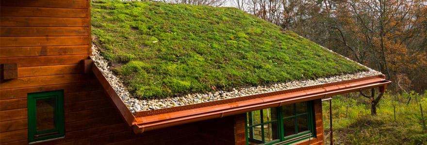 installer de la végétation sur sa toiture